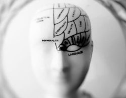 Neuromarketing: Who wouldn't like to see the thoughts of their customers?