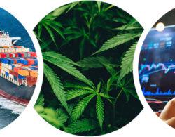 Ratgeber: Diese drei Investmenttrends haben das größte Entwicklungspotenzial